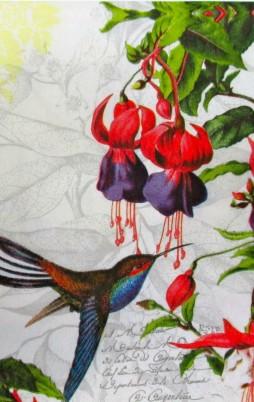 Birds & Other Animals 1001_1.00