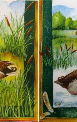 Birds & Other Animals 1011_1.00