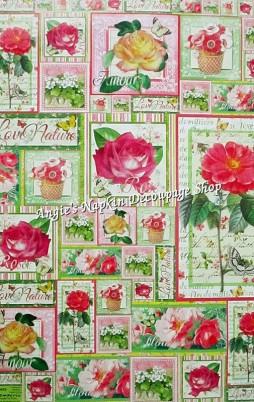 Classic Paper Italy 1002_10.00_(50x70cm)