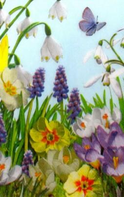 Floral_11001_1.00