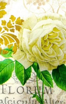 Floral_11003_1.00