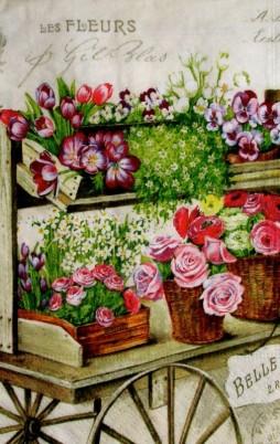 Floral_12008_1.00