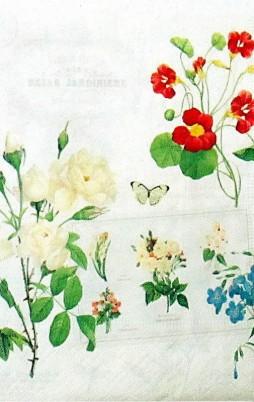 Floral_13004_1.00
