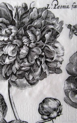 Floral_2008_1.00