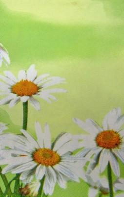 Floral_4005_1.00