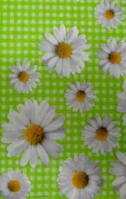Floral_4007_1.00
