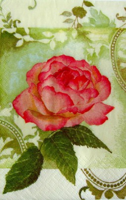 Floral_5002_1.00