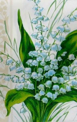 Floral_6007_1.00