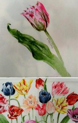 Floral_8010_1.00_F