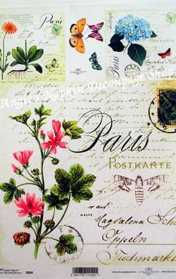 Soft Paper 1002_3.50