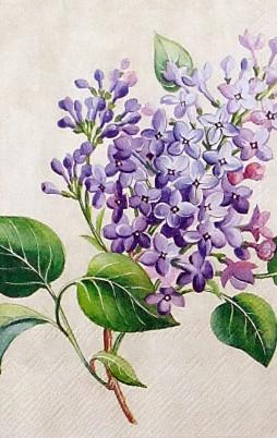Floral 15 004