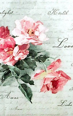 Floral 15 008