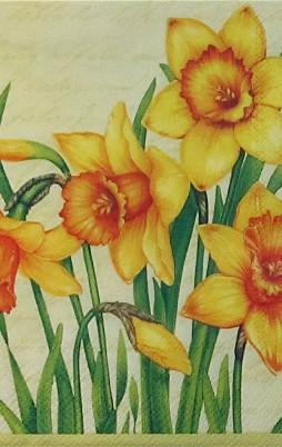 Floral 6008