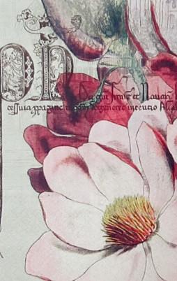 floral-16010