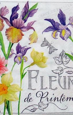 Floral 17004