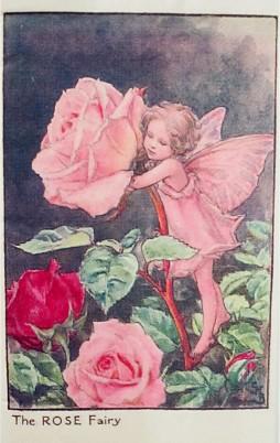 Flower Fairies 3