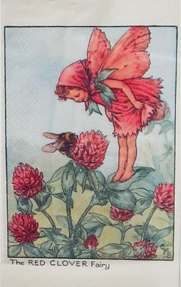 Flower Fairies 4