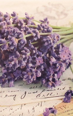 Floral 5004