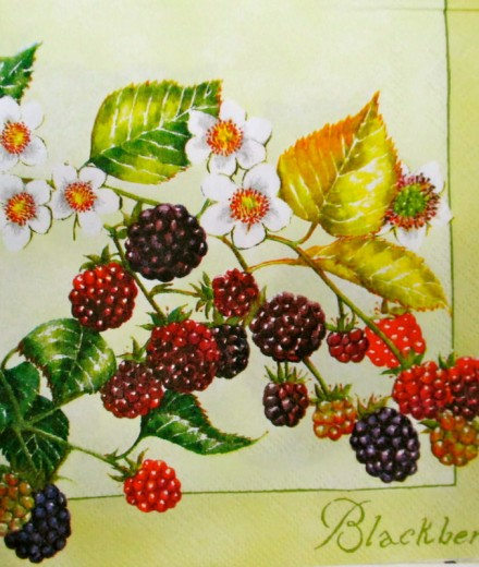 Flowers & Fruits 2002_1.00
